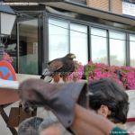 Foto Mercado Medieval Boadilla del Monte 36