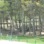 Foto Parque Forestal en Brea de Tajo 1