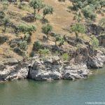 Foto Río Lozoya en Buitrago 27