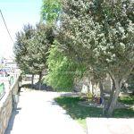 Foto Parque Carlos Manzanares 2