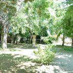 Foto Parque Carlos Manzanares 6