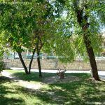 Foto Parque Carlos Manzanares 11