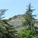 Foto Sierra de la Cabrera 6