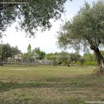 Foto Jardines de Villena 8