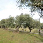 Foto Jardines de Villena 12