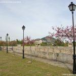 Foto Estanque del Palacio 10