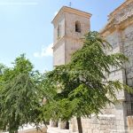 Foto Iglesia de Santa María del Castillo de Campo Real 32