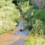 Foto Río Canencia 4