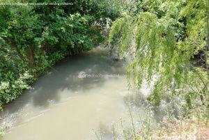 Foto Río Tajuña en Carabaña 4