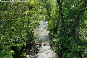 Foto Río Tajuña en Carabaña 6