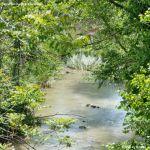 Foto Río Tajuña en Carabaña 7