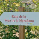 Foto Ruta de la Vega de Marañana 2