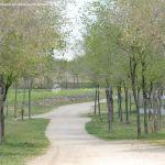 Foto Parque de la Ribera 1