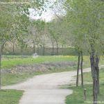 Foto Parque de la Ribera 2