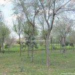 Foto Parque de la Ribera 3