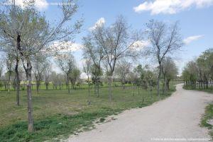 Foto Parque de la Ribera 5