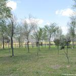Foto Parque de la Ribera 6