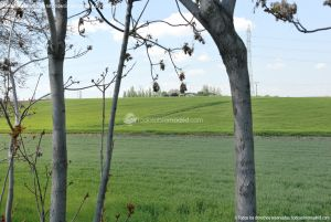 Foto Parque de la Ribera 13
