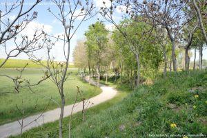 Foto Parque de la Ribera 16