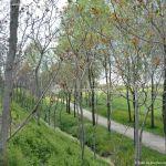 Foto Parque de la Ribera 17
