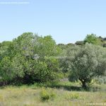 Foto Panorámicas desde la Piedra Escrita 7