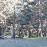 Foto Área Recreativa Las Dehesas 3