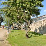 Foto Capilla del Cementerio Antiguo de Collado Mediano 22