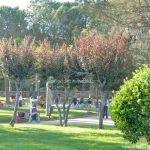 Foto Parque Municipal de Collado Mediano 13