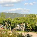 Foto Parque Municipal de Collado Mediano 14