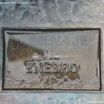 Foto Homenaje al Enebro 6