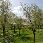 Foto Parque de la Ermita en Colmenar de Oreja 8