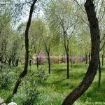 Foto Parque de la Ermita en Colmenar de Oreja 9