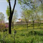 Foto Parque de la Ermita en Colmenar de Oreja 11