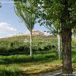 Foto Parque de la Ermita en Colmenar de Oreja 16