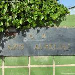 Foto Colegio Público Apis Aureliae 8