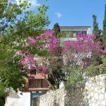 Foto Jardines del Zacatín 10