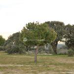 Foto Área Recreativa La Ermita 8