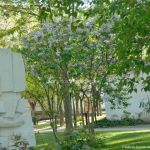 Foto Monumento Quinto Centenario 6