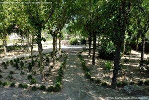 Foto Parque Municipal El Plantío 2