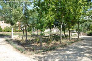 Foto Parque Municipal El Plantío 3