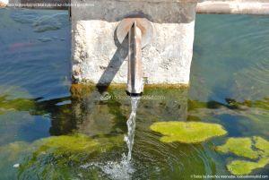 Foto Fuente de los cuatro caños de Daganzo de Arriba 5