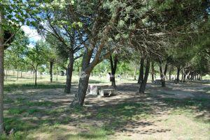 Foto Área Recreativa Virgen del Espino 2