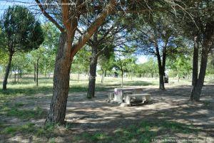 Foto Área Recreativa Virgen del Espino 7