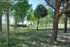 Foto Área Recreativa Virgen del Espino 8
