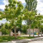 Foto Plaza de la Solana Ines 5
