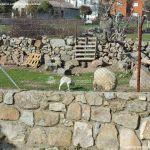 Foto Ovejas en Fresnedillas de la Oliva 3