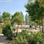 Foto Parque de la Igualdad en Fuente el Saz de Jarama 5