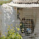 Foto Casa Cueva en Fuentidueña de Tajo 3