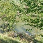 Foto Río Tajo en Fuentidueña 7
