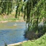 Foto Río Tajo en Fuentidueña 10